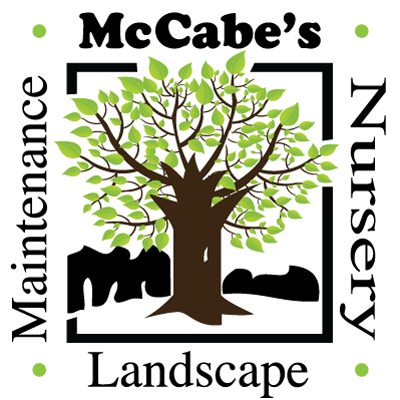 McCabe's Landscape Construction