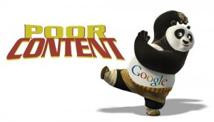 Google-Panda-21